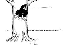 tree-frog-1